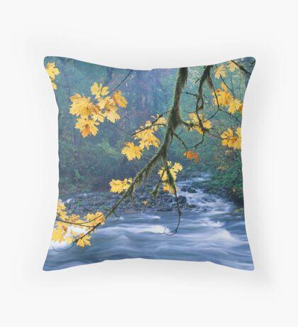 Oregon, Cascade Mountain Throw Pillow