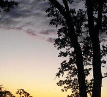 Larravide Sunset 10 Sticker