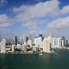 Downtown Miami by Kasia-D