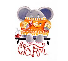 Be Warm! - Rondy the Elephant in his favorite sweater Photographic Print