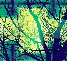 Harmonious Colors - Blue Green Yellow by SRowe Art