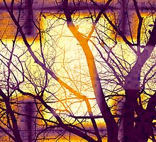 Harmonious Colors - Violet Yellow Orange by MSRowe Art and Design