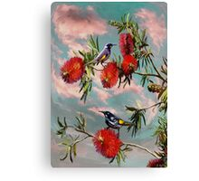 Honey eaters 2012 Canvas Print
