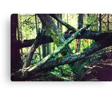 How the Mighty Have Fallen Canvas Print
