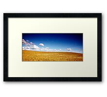 North Yorkshire Cornfield 1 Framed Print