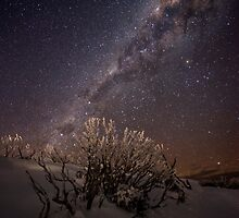 Wintersky by Robert Mullner