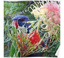 The Flower Eater Poster