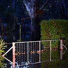 Wangaratta Floods 2013 by Pete Simpson
