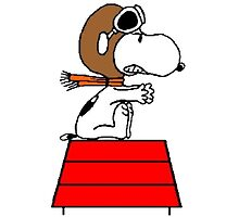 flying pilot snoopy fun by DinaPurifoy