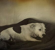 Ruby's Bed Time by Elaine Teague
