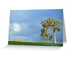 big old gum tree Greeting Card
