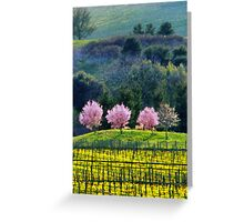 Napa walley Greeting Card