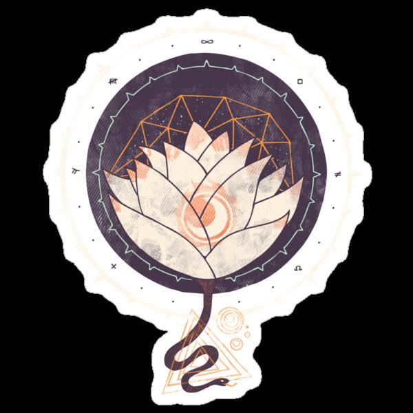 Lotus by Hector Mansilla