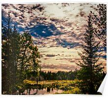 Beaver Pond Sky Poster
