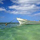 Pristine Tongan Waters by Randy Richards