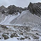 Snow and rocks by zumi