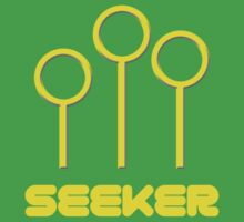 Quidditch Seeker by believeluna