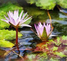 Two Purple Water Lotus by Susan Savad