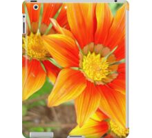 Vibrant Yellow and Vermillion Gazania Rigens Flower iPad Case/Skin