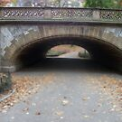 Central Park Tunnel Edit by CharlotteTardis