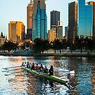 Rowers on the Yarra River, Melbourne, Australia by jamjarphotos