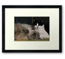 Sometimes Love Framed Print