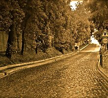 The Villa Road by JARBO
