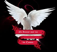 His Banner over me is Love by Suzanne  Carter