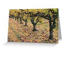 autumn apple trees Greeting Card