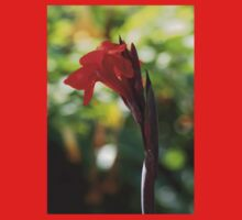 Red Canna Lily Baby Tee
