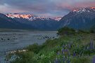 Waimakariri River _ New Zealand by Barbara Burkhardt