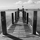 Walkway by Vicki Spindler (VHS Photography)