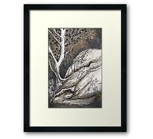 Dolphin Rocks, Summerhill Glen. Framed Print