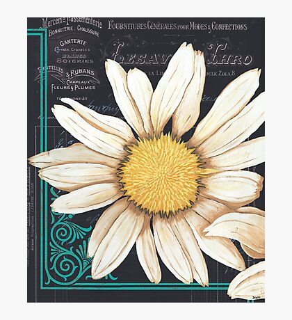 Chalkboard Daisy 2 Photographic Print