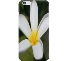 A Single Plumeria Flower Macro iPhone Case/Skin