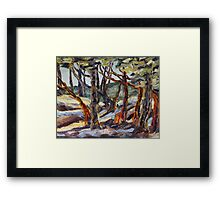 End of Day with Arbutus  Framed Print