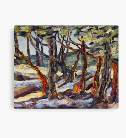 End of Day with Arbutus  Canvas Print