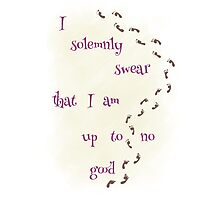 I Solemnly Swear... Photographic Print