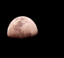 Super Moon by WildThingPhotos