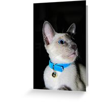 Murphy! Greeting Card
