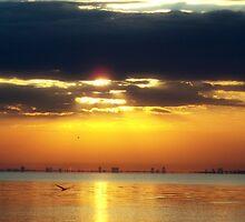 Golden Sunrise by Zzenco