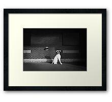 Alert Dog Framed Print