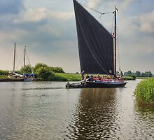 Albion on the River Thurne by Avril Harris