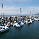 Sailboats at the Pier by MaluC