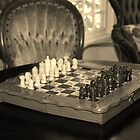 Chess Set by Cynthia48
