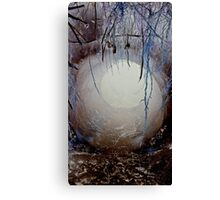 Wonderland #2 Canvas Print