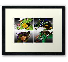 Turtles 2013 Framed Print