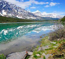 Alberta Beauty by Harry Oldmeadow