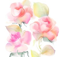 Beautiful rose flowers over white background  by Teni