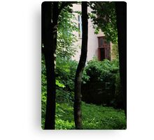 Sneak peek from park into back yard in Oslo old town. Canvas Print